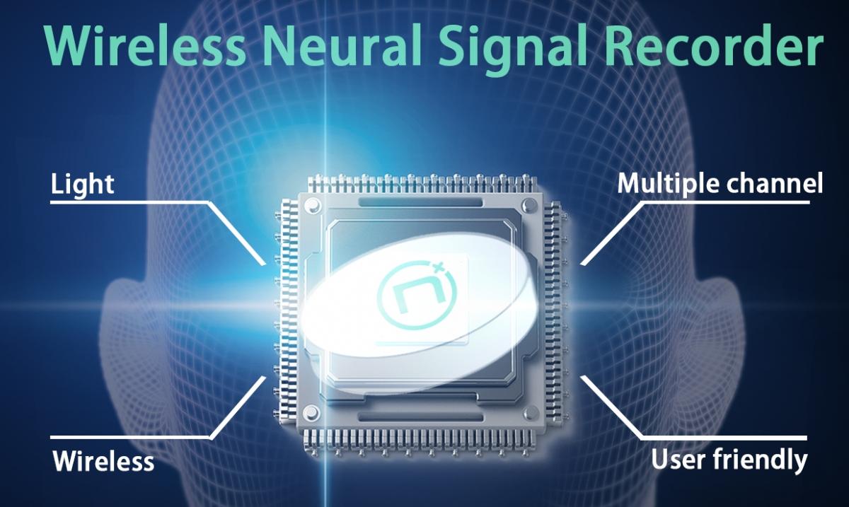 国内脑机接口初创公司「NeuraMatrix」获数百万美元Pre-A轮融资